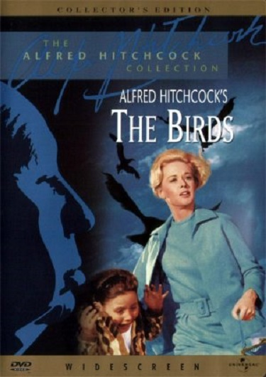 Stylish Halloween Movies The Birds 2